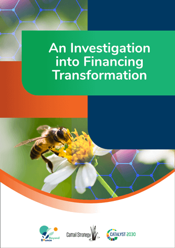 An Investigation into Financing Transformation