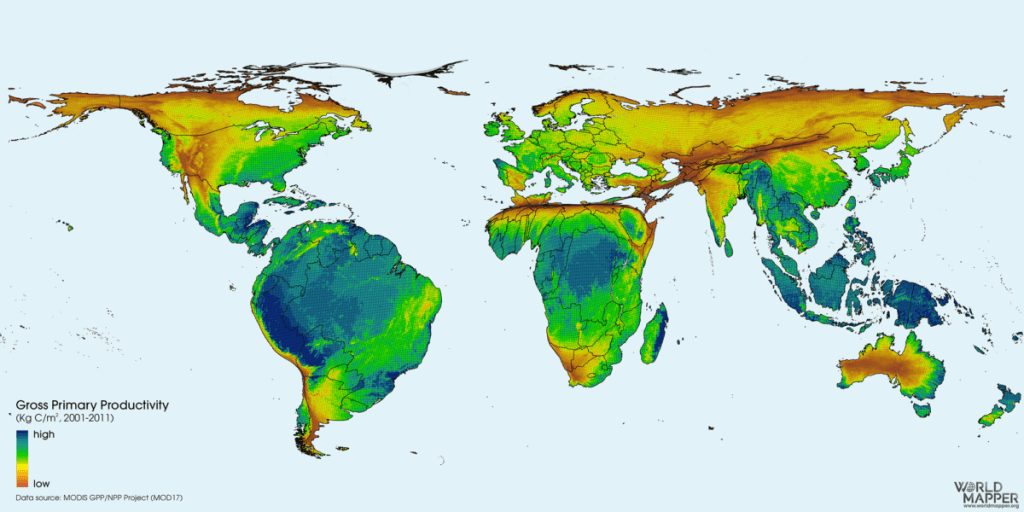 Terrestrial Ecosystem Productivity